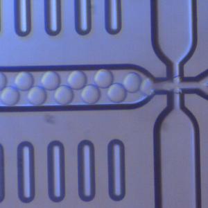 マイクロドロップレット作製