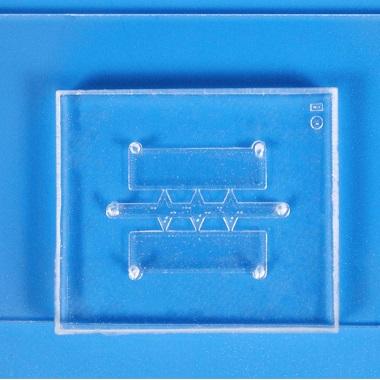 細胞浸潤・走化性チップ